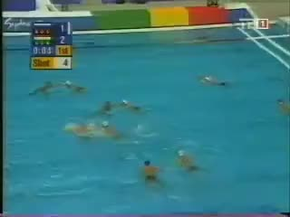 Watch and share Waterpolo GIFs on Gfycat