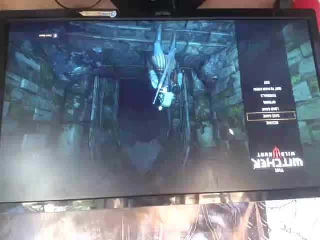 creepygaming, fapfap, The Witcher 3 Fap Bug GIFs
