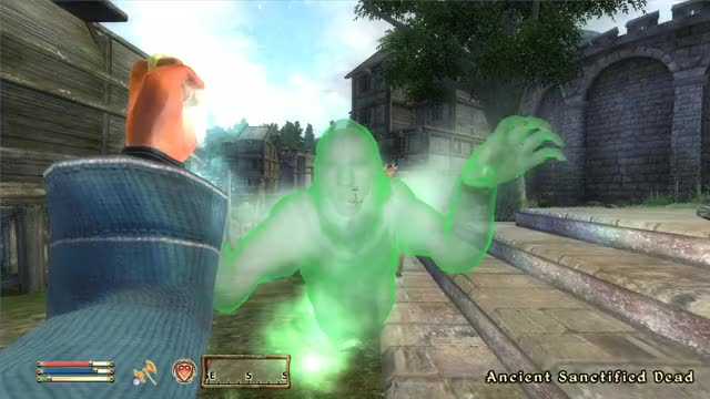 Watch Elder Scrolls IV Oblivion 2019.03.14 - 00.39.22.06.DVR GIF by @floreum on Gfycat. Discover more elderscrollsivoblivion GIFs on Gfycat
