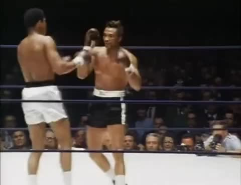 Watch Ali pull counter GIF on Gfycat. Discover more boxing, heavyweights GIFs on Gfycat