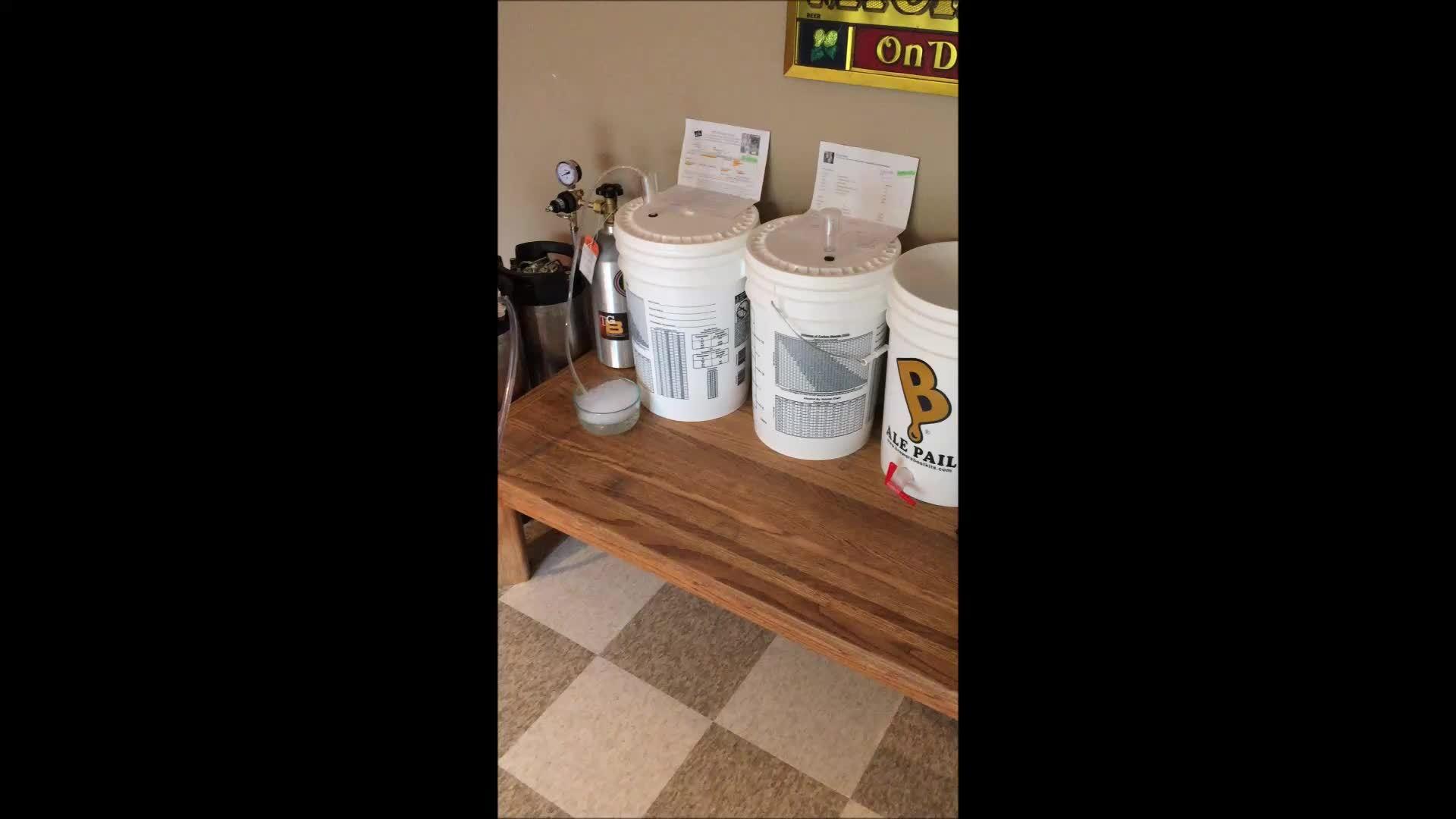 homebrewing, I'm glad I used a blow off tube! [Mackinac Island Amber Ale - Simple LME recipe inside.] (reddit) GIFs