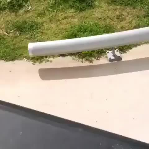 Watch this scooter GIF by tothetenthpower (@tothetenthpower) on Gfycat. Discover more scooter GIFs on Gfycat