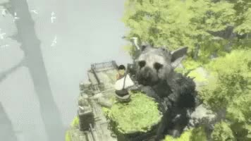 Watch and share The Last Guardian GIFs on Gfycat