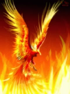 Watch mythical phoenix GIF on Gfycat. Discover more related GIFs on Gfycat