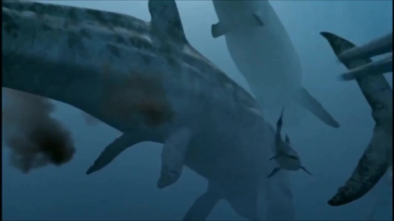 Carnivore, ExtinctAnimals, FilterFeeder, Hybodus, Impossiblepictures, Leedsichthys, Leedsichthysproblematicus, MarineAnimals, Metriorhynchus, PrehistoricAnimal, PrehistoricAnimals, Seamonsters, SeldomSeenSpecies, bbc, croc, jurassic, megafauna, seamonstersawalkingwithdinosaurstrilogy, shark, walkingwith, Sea Monsters - Predators stalk the Leedsichthys GIFs