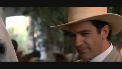 Watch and share Antonio Banderas GIFs and Apartments GIFs on Gfycat