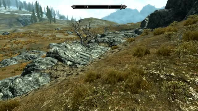Watch Skyrim blurry textures GIF by Singh to Ricketts (@ricketts) on Gfycat. Discover more related GIFs on Gfycat
