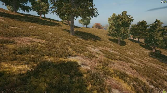Watch and share Vlc-record-2018-05-01-18h01m50s-PLAYERUNKNOWN GIFs on Gfycat