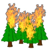 Watch and share Forest Fire GIFs on Gfycat