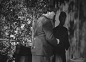 Watch and share The Three Stooges GIFs on Gfycat