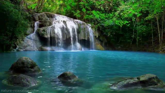 Waterfall & Jungle Sounds - Relaxing Tropical Rainforest Nature
