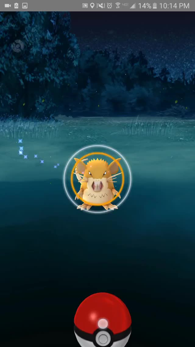 Watch Berry Test #1 Throw #1 GIF by @xcrowv on Gfycat. Discover more pokemongo GIFs on Gfycat