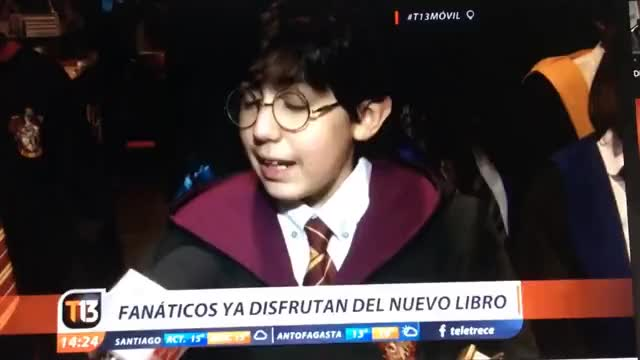 Watch and share Potter Chileno GIFs on Gfycat