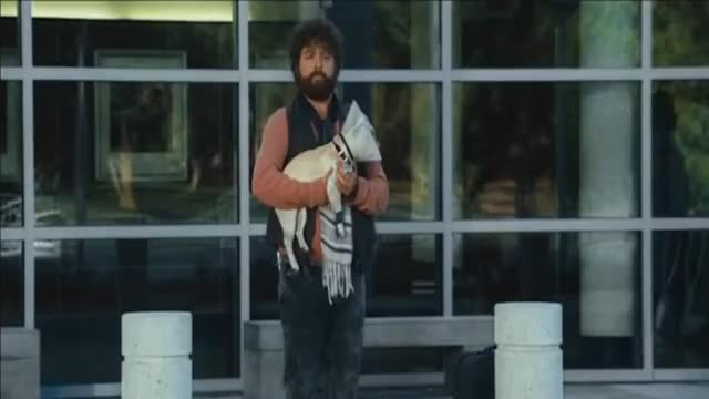 Due Date: Best Scene - (Spit in the Dogs face)