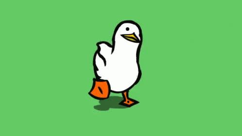 animal, animals, bird, duck, ducks, nature, walking, Walking Duck GIFs