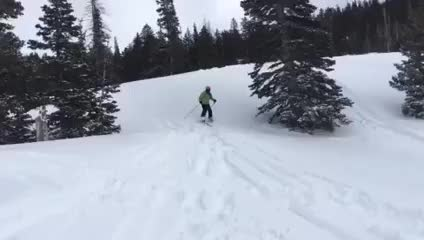 Watch and share Classic Powder Day GIFs on Gfycat