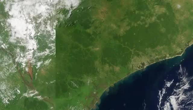 Watch and share ENVIRONMENTAL IMPACT 01: Flooding, Mozambique GIFs on Gfycat