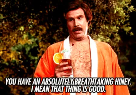 Watch this anchorman GIF on Gfycat. Discover more anchorman, ron burgundy, will ferrell GIFs on Gfycat