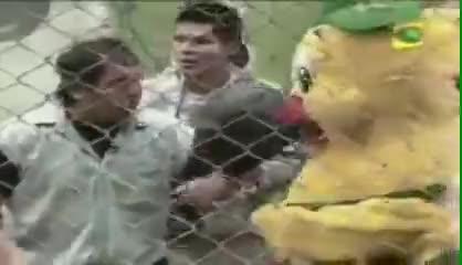 Watch Cuy al rescate de Pio Chicken... GIF by @ninawong on Gfycat. Discover more Alvarosky77, Entertainment, combat sports, cuy al rescate, cuy ayuda a pio chicken, cuy kaphwan, cuy salva al pollo, cuy to the rescue, la carica della cavia GIFs on Gfycat