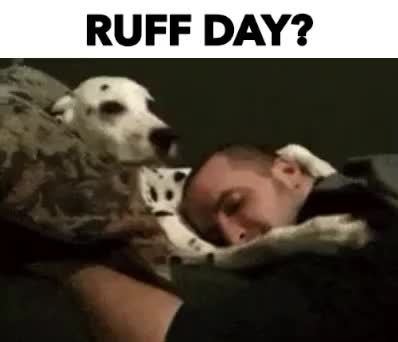 Watch and share RUFF DAY? GIFs by Reactions on Gfycat