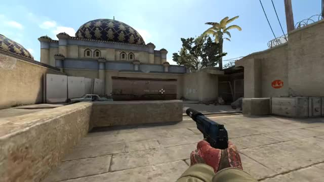Watch and share Usp Ace GIFs by s1im on Gfycat