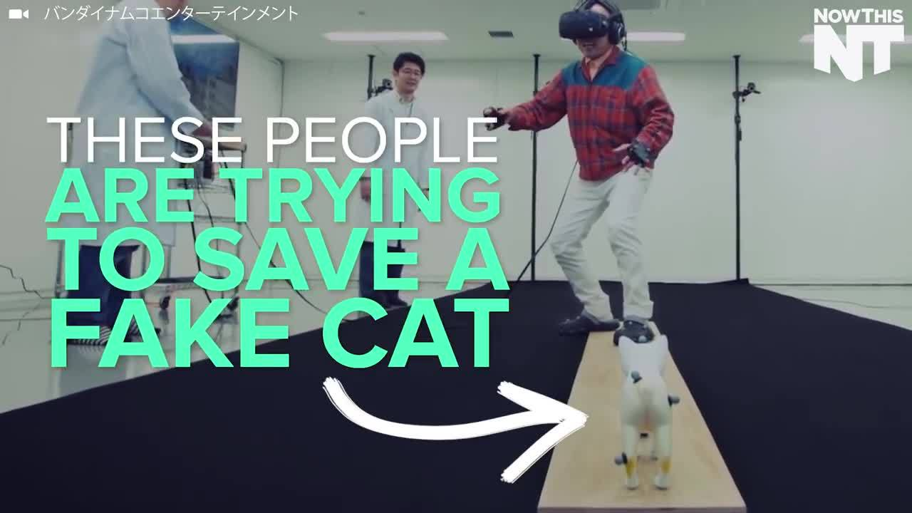 game, reality, virtual, Intense VR Game Challenges You To Save A Cat From A Ledge GIFs