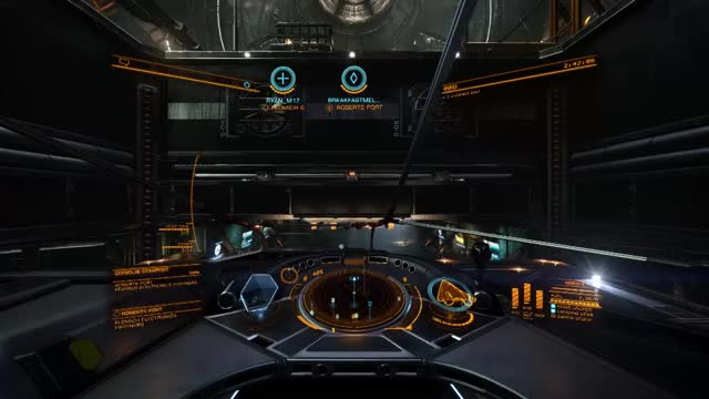 Watch this GIF by MackTheHunter (@mackthehunter) on Gfycat. Discover more EliteDangerous GIFs on Gfycat