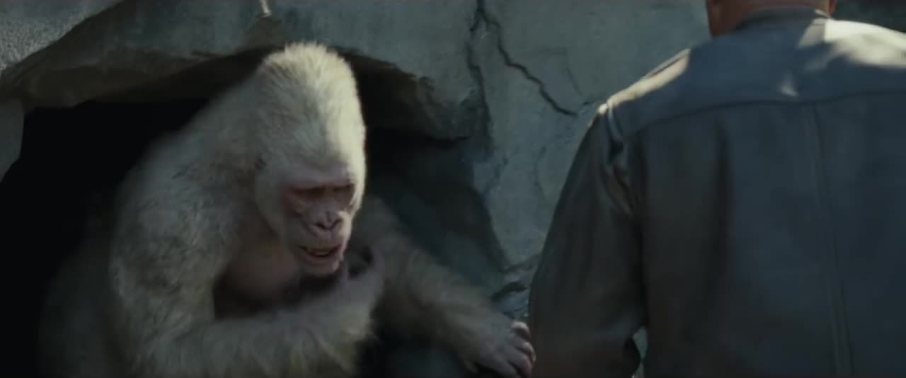 action, epic, movie, movie trailer, movies, rampage, rampage movie, rampage the movie, warner bros, warnerbros, wb, George is afraid GIFs
