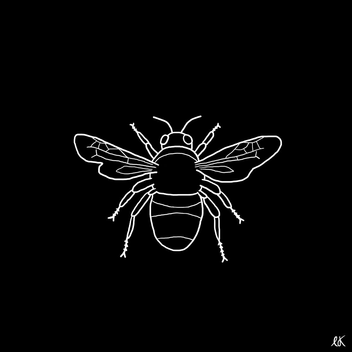 beekeeping GIFs