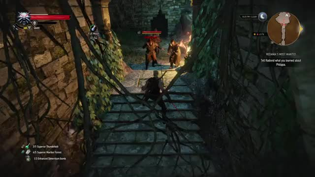 Watch and share Witcher GIFs and Gaming GIFs by skewbz2 on Gfycat