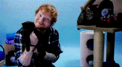 Watch and share Ed Sheeran GIFs and Mmva GIFs on Gfycat