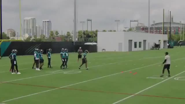 Watch and share  Keelan Cole Makes A Ridiculous One-handed Catch During OTAs GIFs on Gfycat