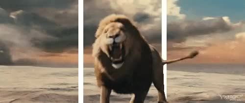 Watch and share Narnia 3 GIFs and Aslan GIFs on Gfycat