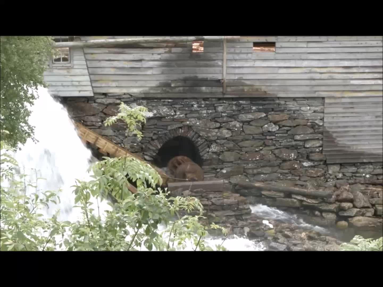Hardanger fartøyvernsenter, Water Powered Sawmill GIFs