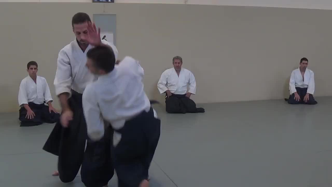 aikido, Aikido Seminar October 2017 Vassilis Nykteris 5th Dan Aikikai GIFs