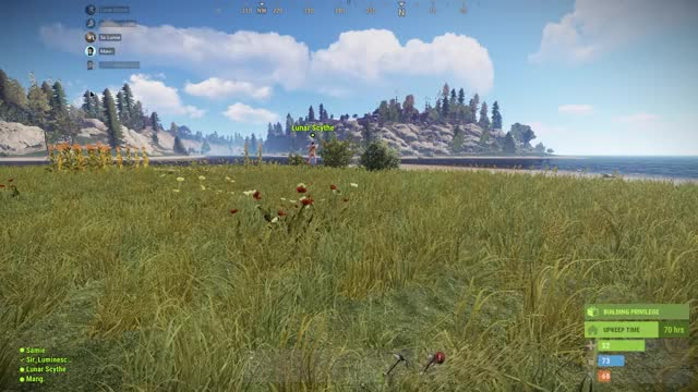 Watch and share Rust 2019-07-15 18-42-17 GIFs by mang__ on Gfycat