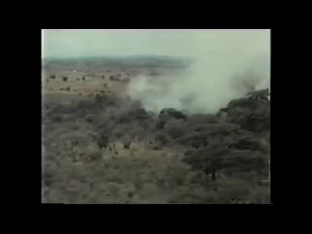 Watch and share Bush War GIFs and Rhodesia GIFs by sensibleusername on Gfycat