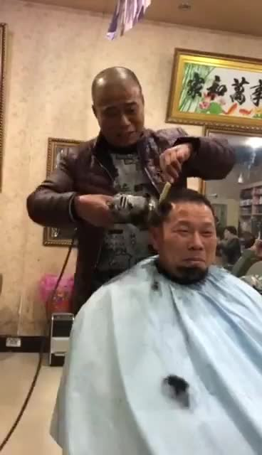Watch and share Crazy Haircut Funny GIFs by MarcusD on Gfycat
