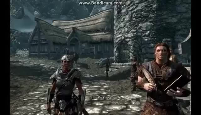 Watch and share Skyrim: Who Are You? GIFs on Gfycat