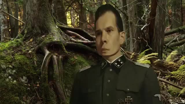 Watch Hitler reacts to Shrek (Hitler Parody) GIF on Gfycat. Discover more adolf hitler, hitler parody, ww2 GIFs on Gfycat