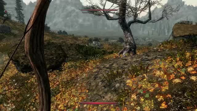 Watch and share Skyrim 2020-02-20 23-04-11 GIFs by chirpaholic on Gfycat