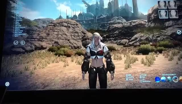 Watch and share Roegadyn GIFs and Ffxiv GIFs on Gfycat