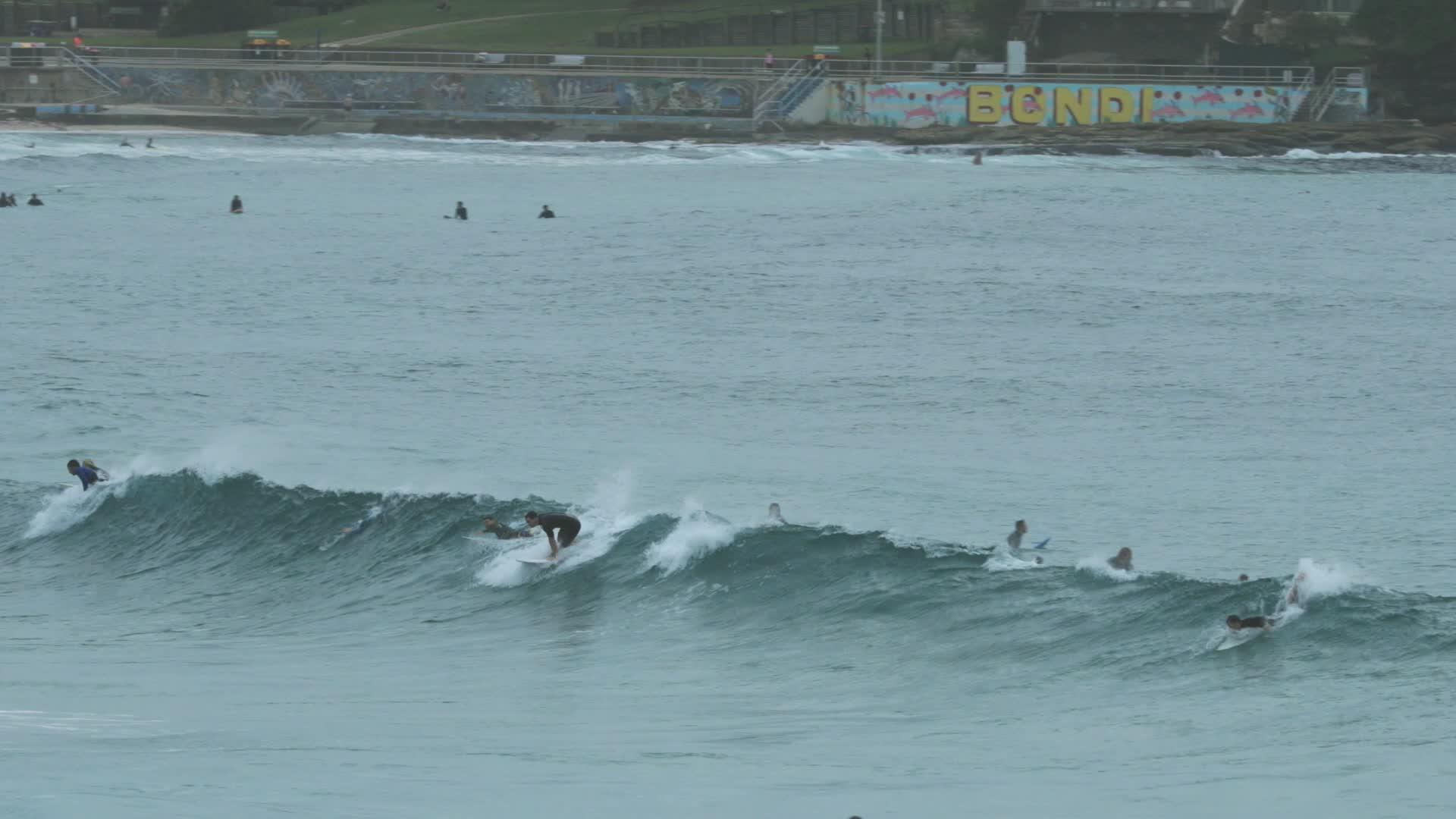 fail, slow motion, surfing, Surfing Bondi face plant GIFs