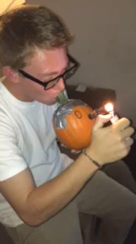 StonerEngineering, pumpkin GIFs