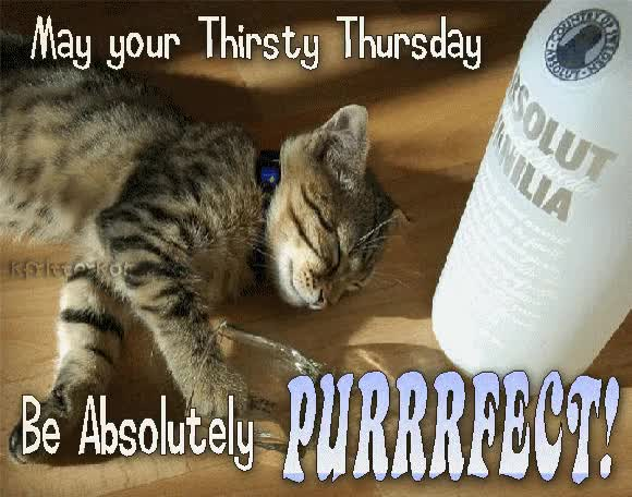Watch and share May Your Thirsty Thursday Be Absolutely Perfect GIFs on Gfycat