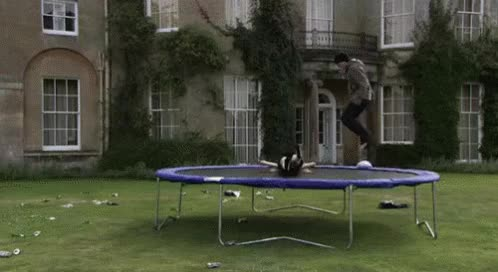 Watch this bounce GIF on Gfycat. Discover more bounce, bouncing, jump GIFs on Gfycat