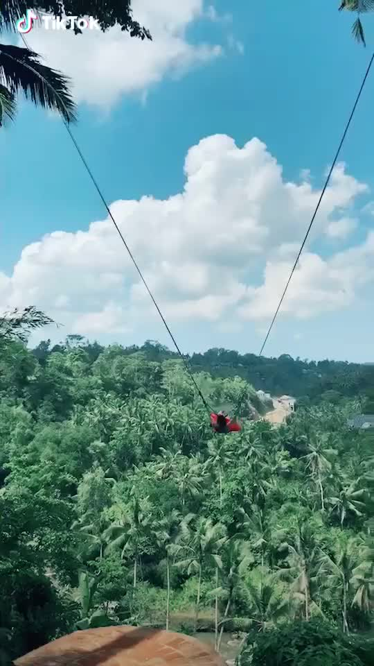 Watch and share Swing GIFs by kindlyletterhead on Gfycat
