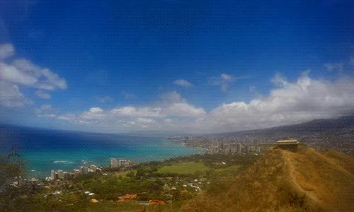 Watch and share Hawaiian GIFs on Gfycat