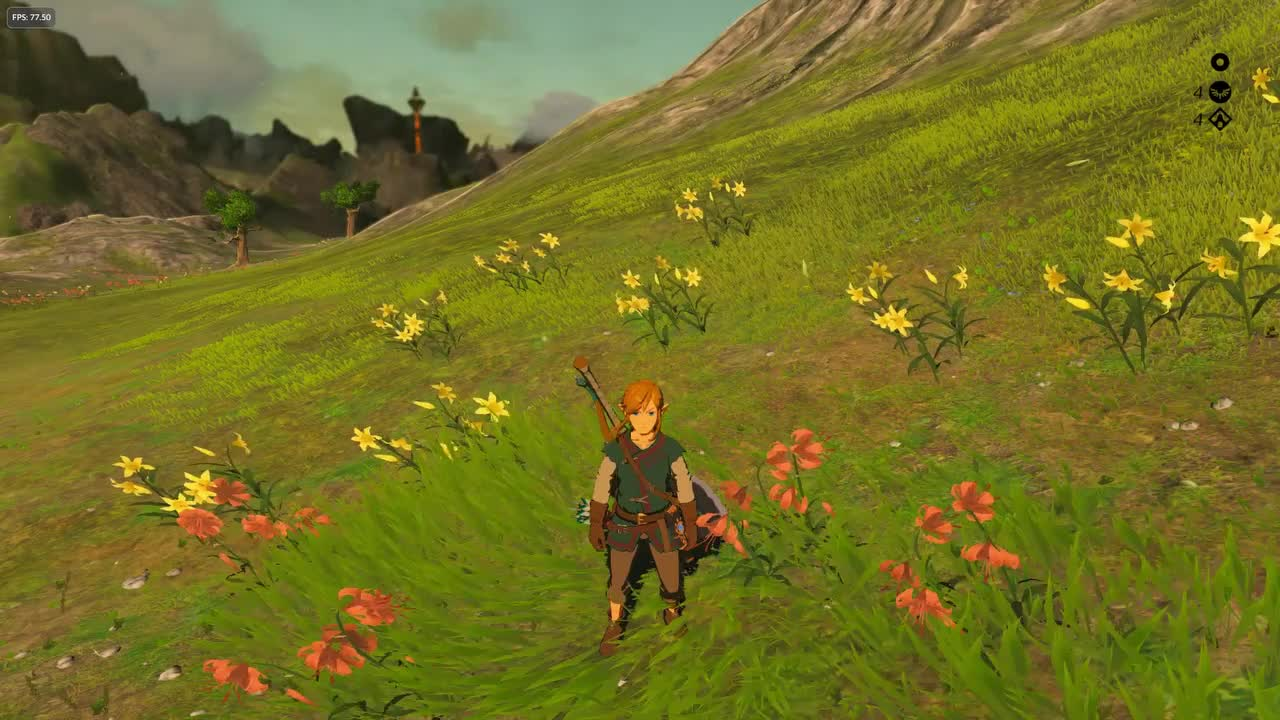 Breath of the Wild Trip GIFs