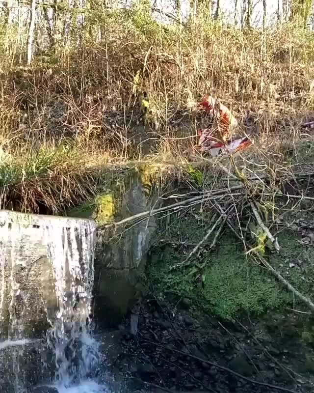 Watch and share Jarvisstyle GIFs and Superenduro GIFs by Orlando blunt on Gfycat